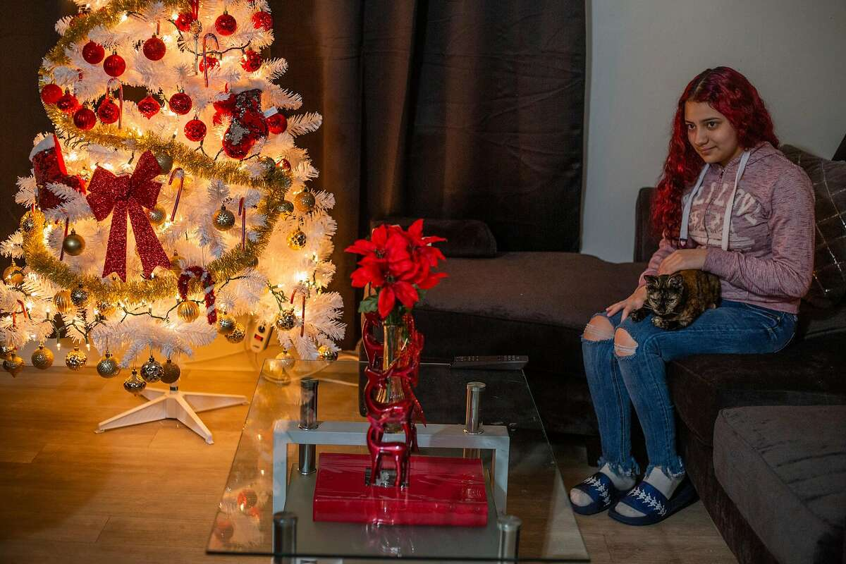 Serenity Navarrette, 13, sits in front of her family christmas tree and pets her cat on December 11, 2020 in San Jose, CA.