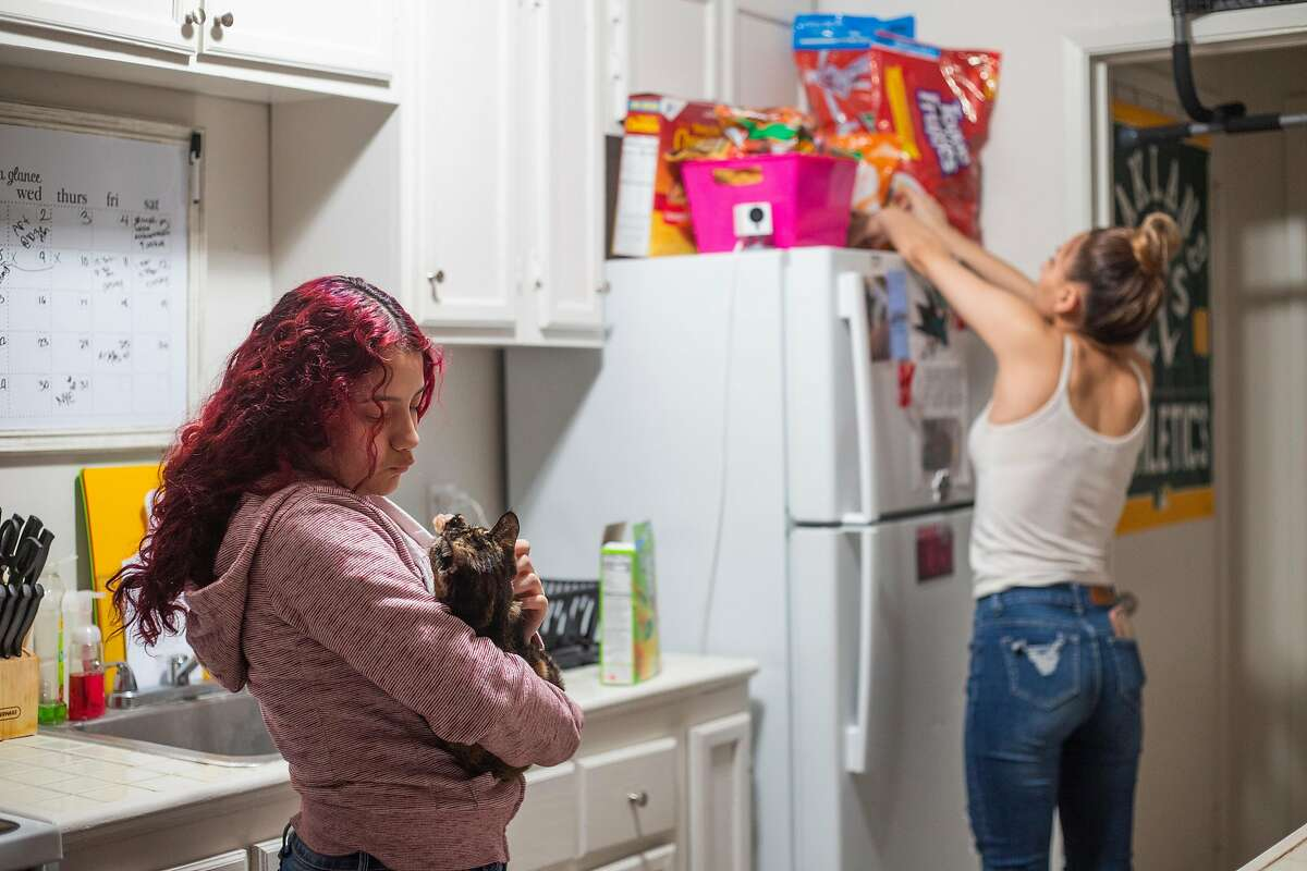 Serenity Navarrette, 13, stands in her families apartment and pets her cat on December 11, 2020 in San Jose, CA.