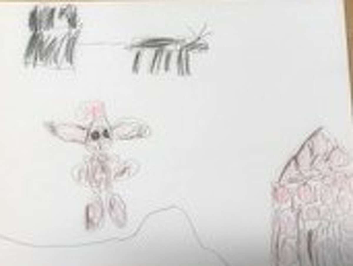Entries from school children around the Capital Region for the 2020 Holiday Card Contest.