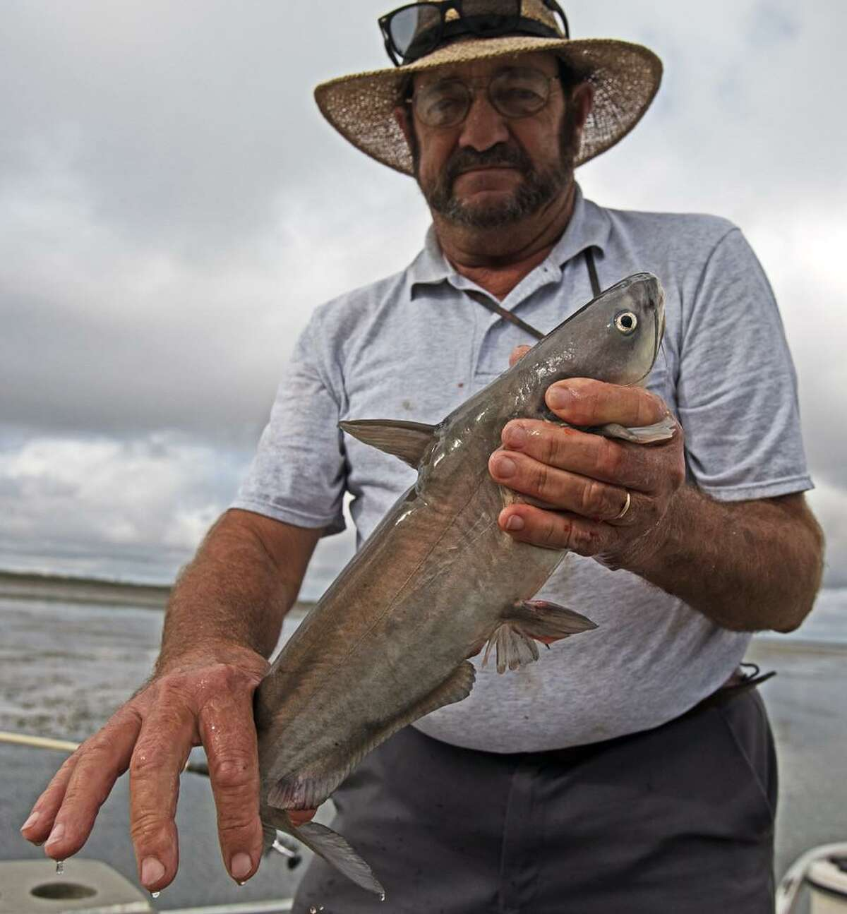 """Fishing guide Marvin """"Catfish Marv"""" Elledge displays a 22-inch blue catfish at Choke Canyon Reservoir, where he expects good fishing for such larger fish through the winter."""