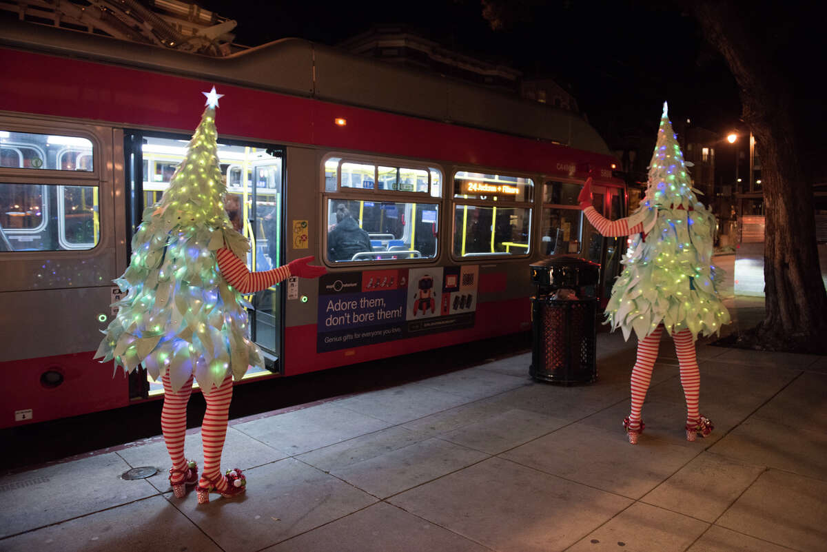 Tree #1 and Tree #2, aka the Tree Twins take Divisadero St. by surprise.