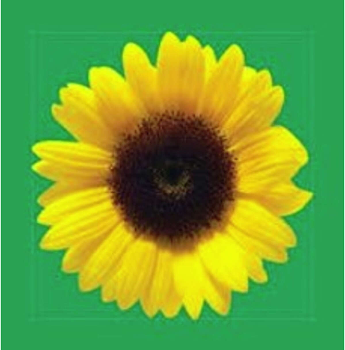 San Jose's airport now provides lanyards with a picture of a sunflower to those who have less-visible disabilities.