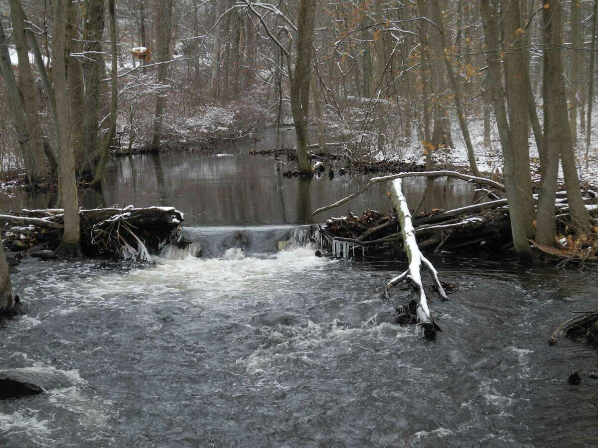 The Norwalk River flows past the winter snows in Georgetown. A program on how stream connectivity is measured with trail cameras will be offered by Wilton Library.