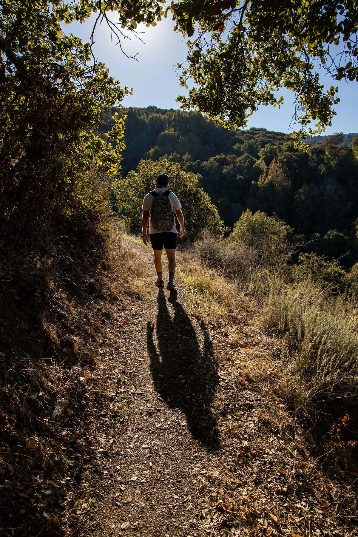 Palo Alto's Foothills Park is, without a shadow of doubt, a special park.