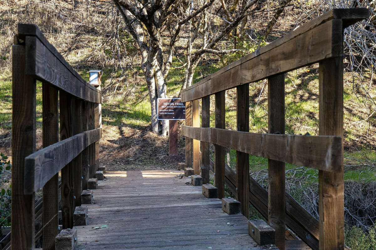 Palo Alto's Foothills Park opened to non-Palo Alto residents for the first time in 51 years on Thursday, December 17, 2020.