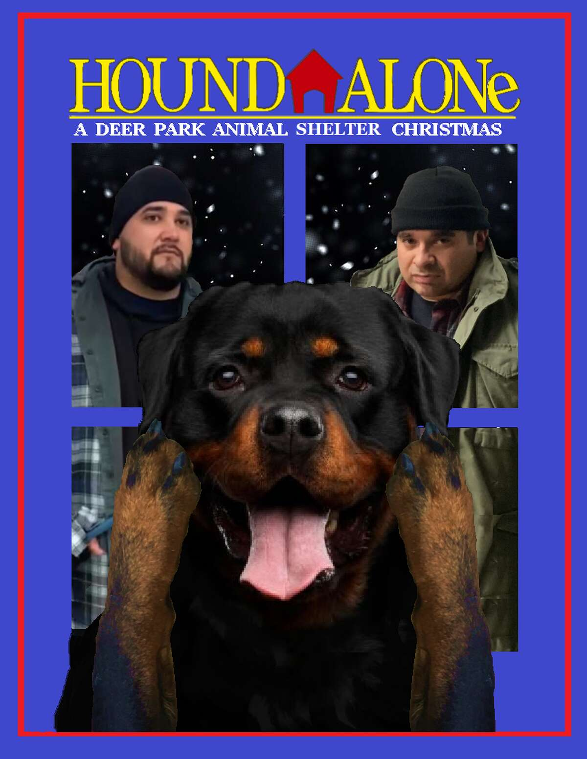 """The Deer Park Animal Shelter has gone into the movie-making business, starring Bella in the humorous short """"Hound Alone, a Deer Park Animal Shelter Christmas."""""""