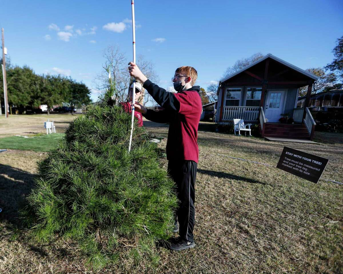 Nathan Tucker, 15, measures a tree for a customer at Holiday Acres Farm, a Christmas tree farm, Thursday, December 10, 2020, in Manvel.