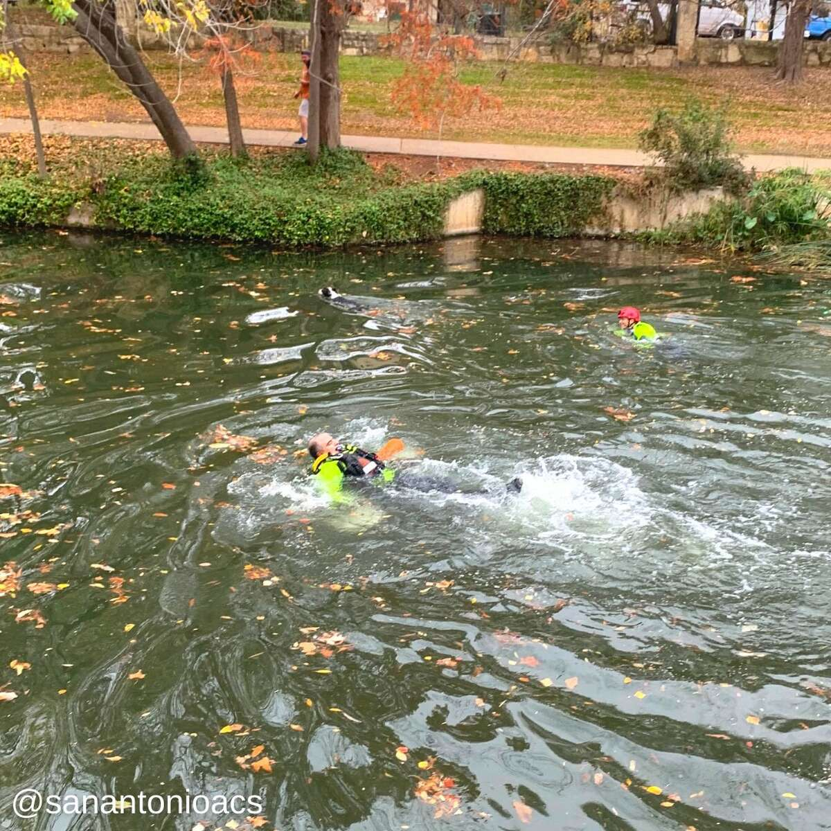 ACS was dispatched and the San Antonio Fire Department's water rescue team followed up to assist in the rescue.