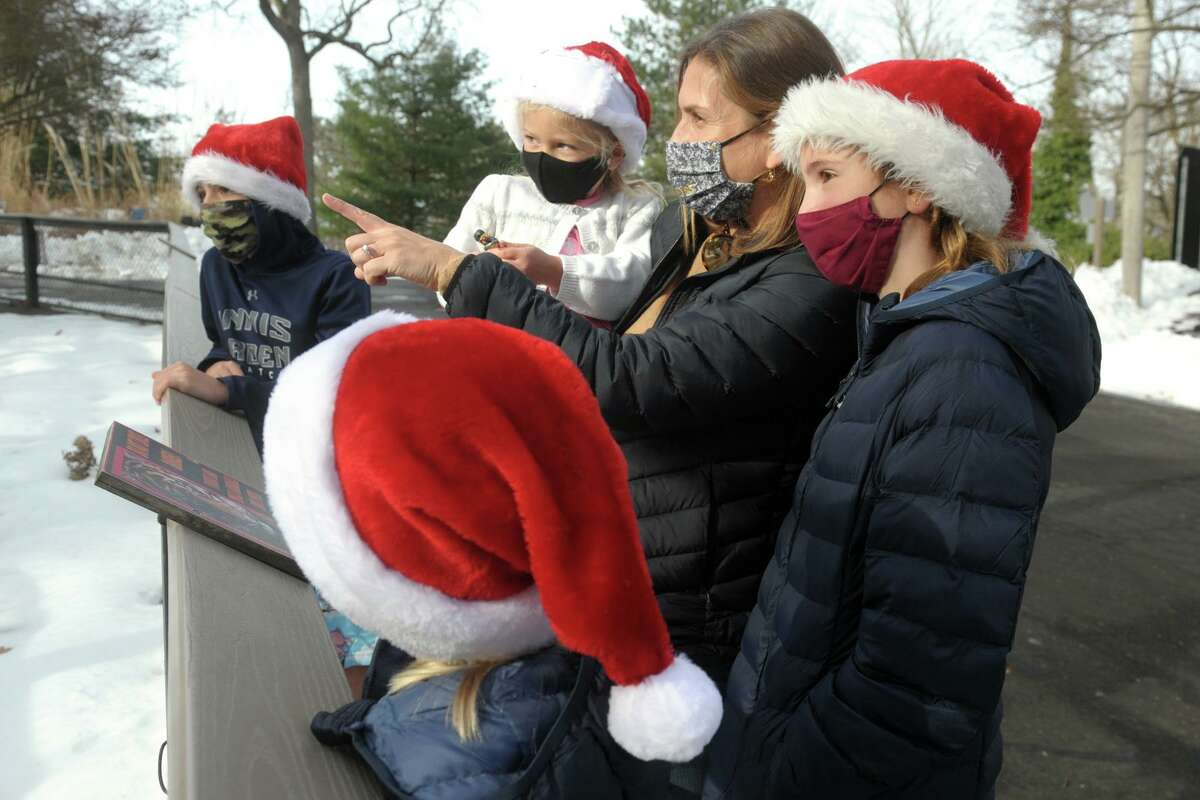 Sarah Sippel, of Greenwich, and her children, from left, Campbell, Remy, Ella and Shay watch the Amur tigers during a Christmas Eve visit to Connecticut's Beardsley Zoo in Bridgeport on Thursday.
