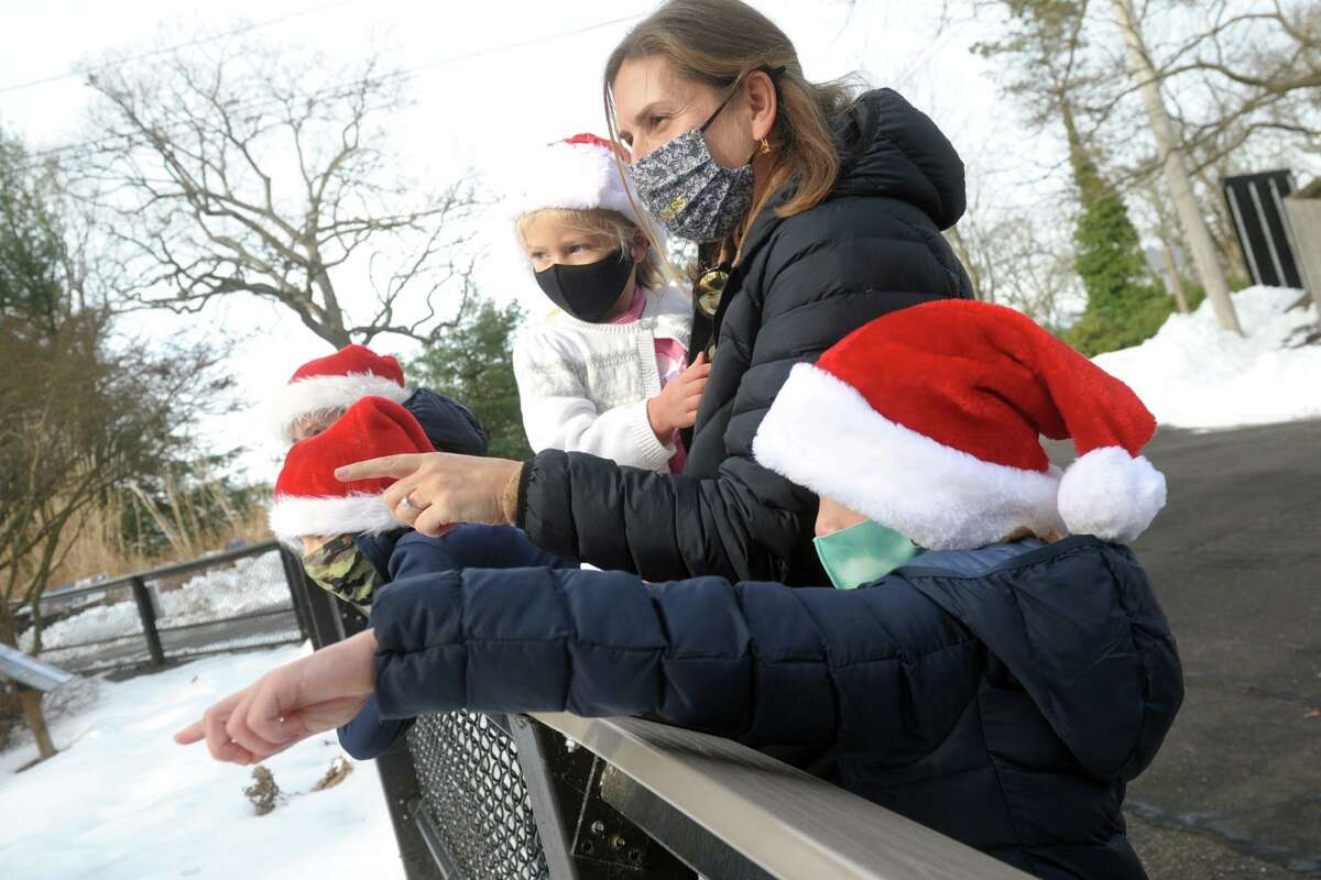 Sarah Sippel, of Greenwich, holds her daughter Remy as she and her other children Campbell, Ella and Shay watch the Amur tigers during a Christmas Eve visit to Connecticut's Beardsley Zoo, in Bridgeport, Conn. Dec. 24, 2020.