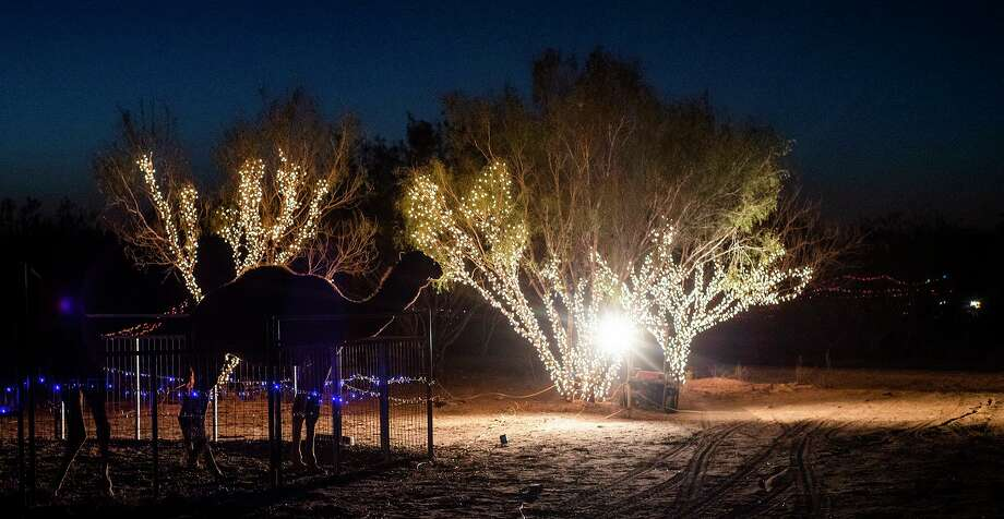 A camel is silhouetted against Christmas lights at the Rancho De Navidad on Saturday, Dec. 26 as part of the park's Christmas lights trail display. Photo: Danny Zaragoza / Laredo Morning Times