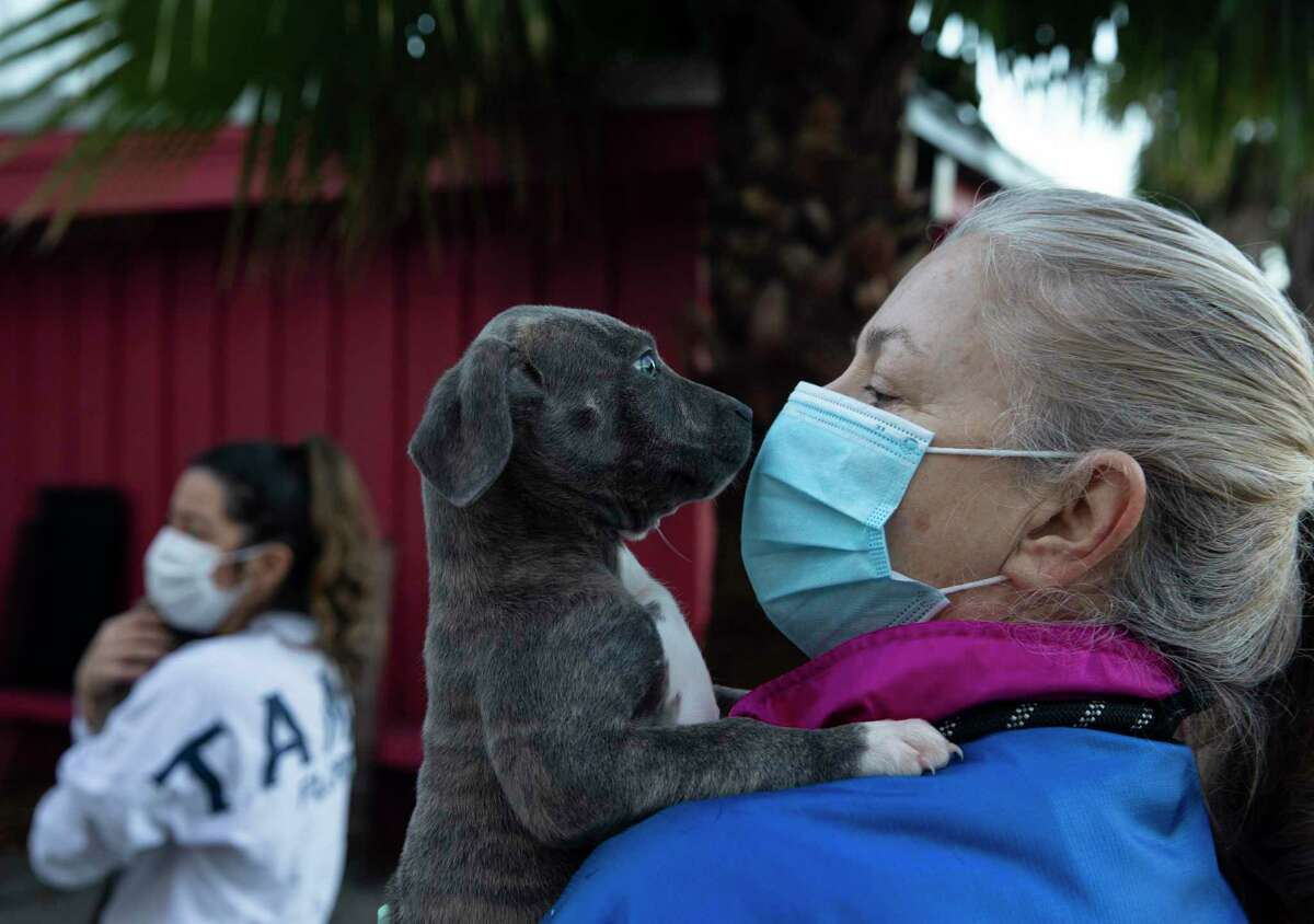 Rescued Pets Movement volunteer Grace Weng checks a puppy in for transport to Colorado, where there is a shortage of adoptable pets, Monday, Dec. 21, 2020, at Rescued Pets Movement in Houston.