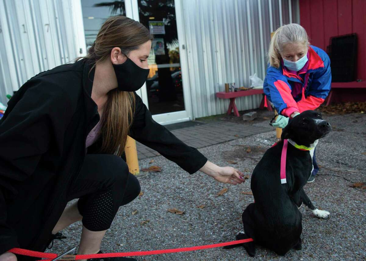 Rescued Pets Movement Foster and Volunteer Coordinator Kayla Kodak, left, and volunteer Wendy Keim checking in a dog before transporting animals to Colorado, Monday, Dec. 21, 2020, at Rescued Pets Movement in Houston.