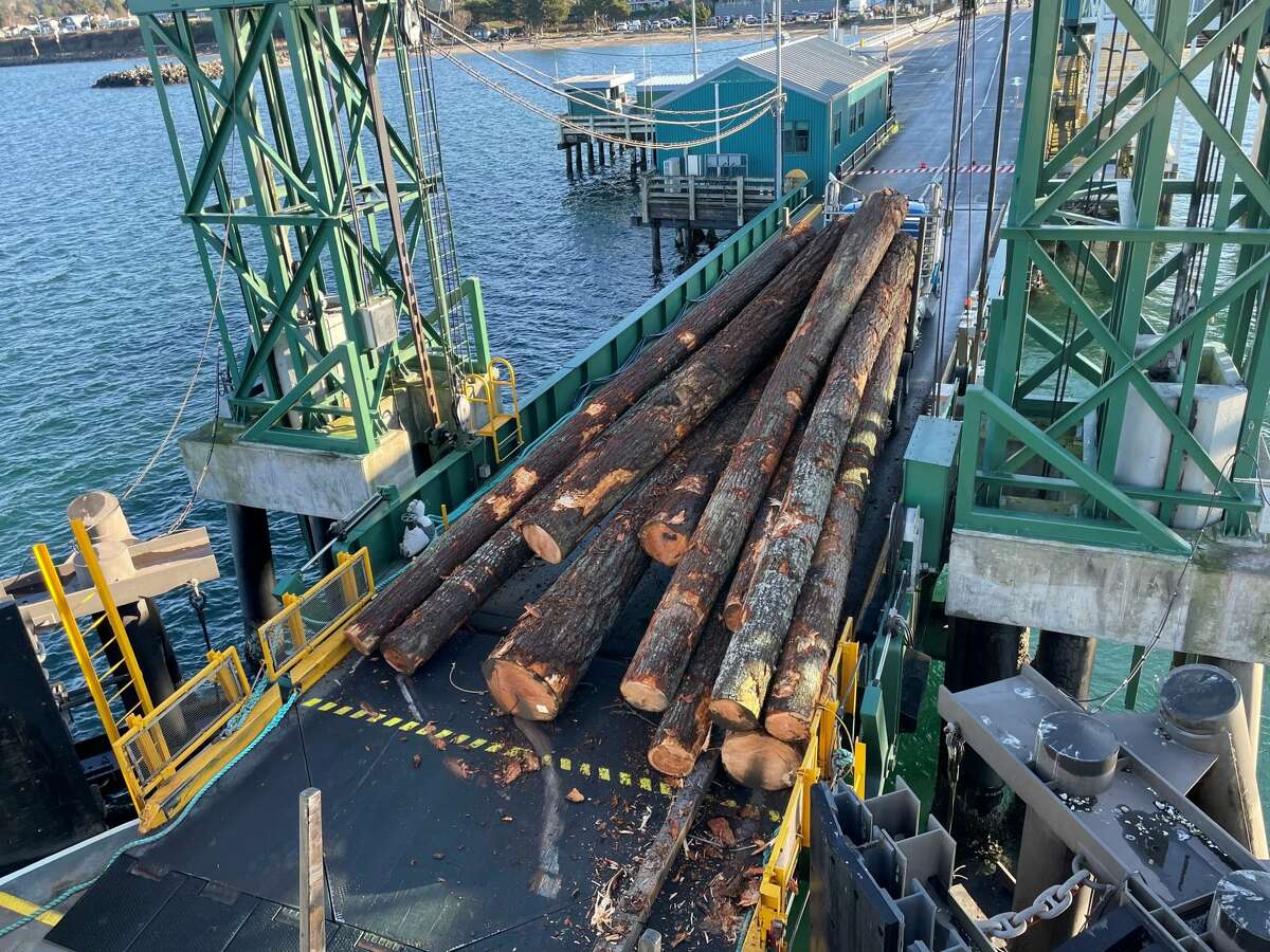A load of logs broke loose from a logging truck at the Edmonds terminal of the Kingston-Edmonds route. Washington State Ferries tweeted the incident and said delays would affect the route throughout the day on Dec. 28, 2020.