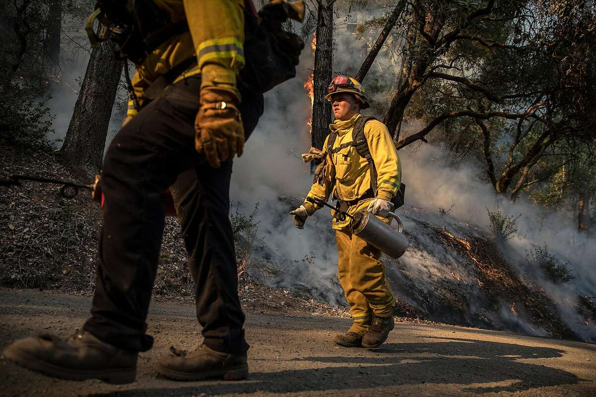 Firefighters from Cal Fire and North Sonoma County crews set a controlled burn in Healdsburg.