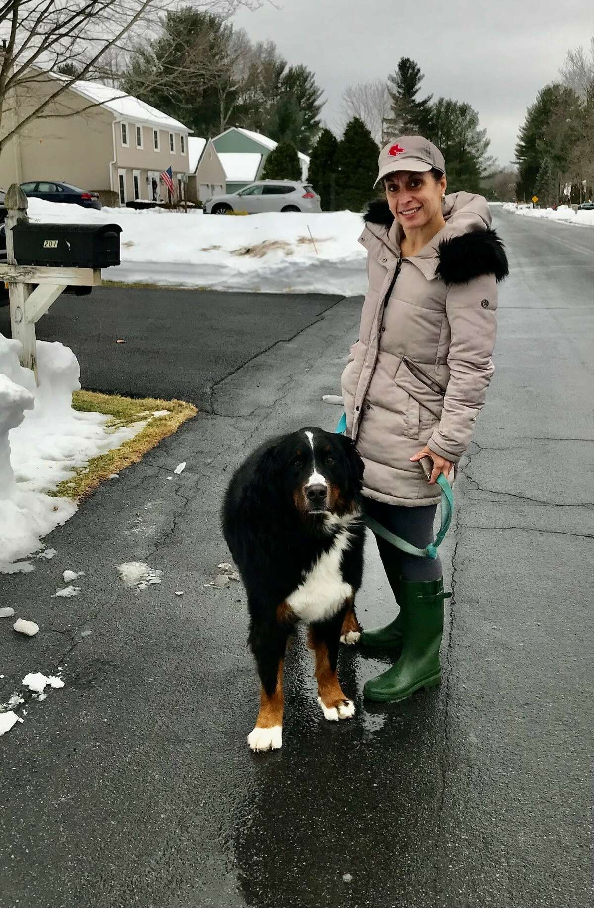 Nicole Maurer, of Placid Drive in Guilderland, N.Y., said her Bernese Mountain Dog, Jasmine, waits excitedly for Ray Andi to pull up in his Postal Service truck each day around 2 pm.
