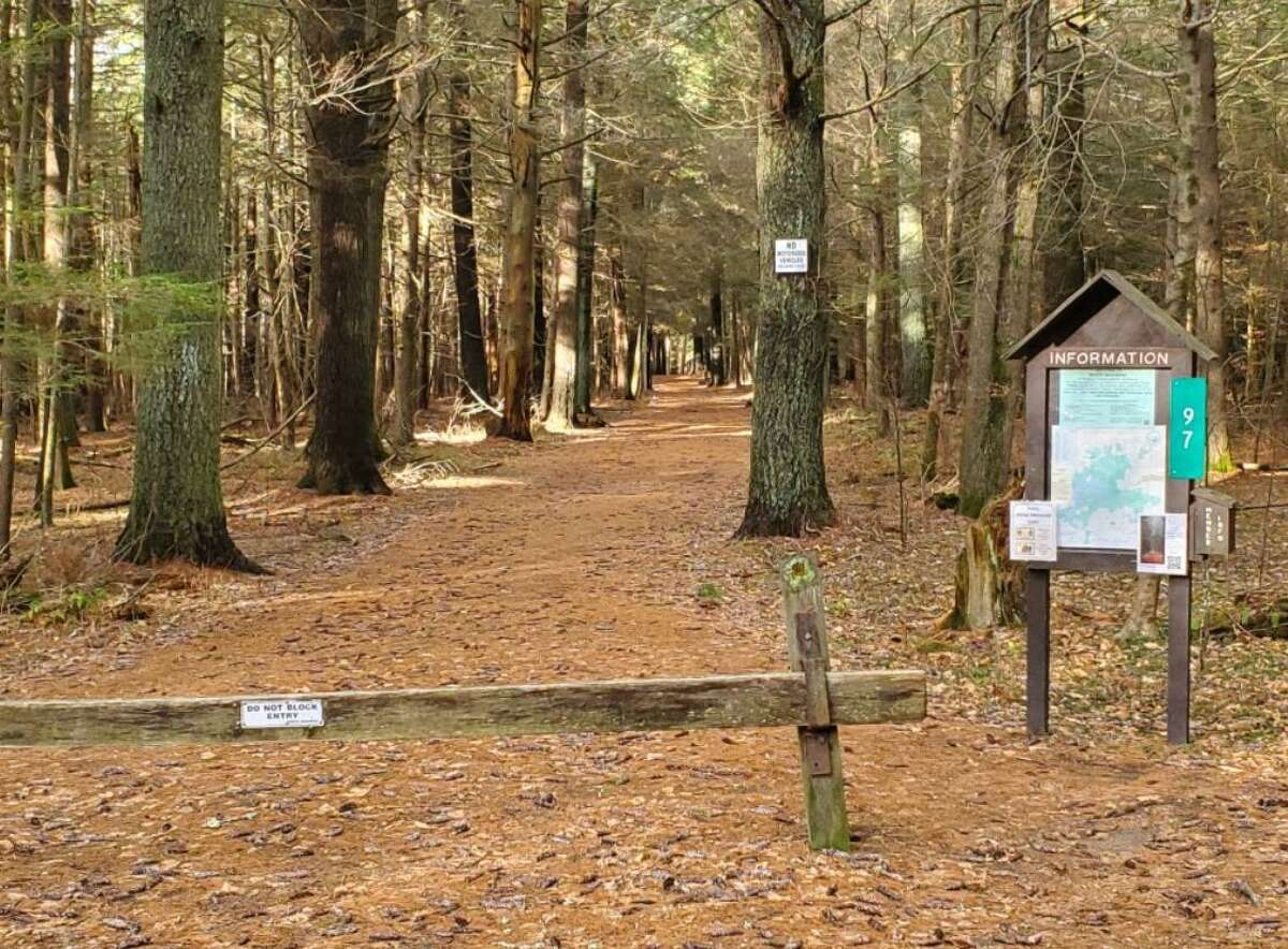 One of the reflective trailhead numbers at a trail at White Mountain Conservation Center in Litchfield