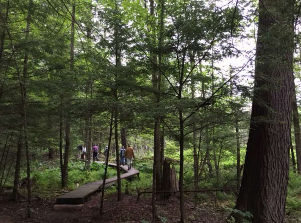 Above, hikers make their way along a trail at White Memorial in Litchfield. The 4,000 acre conservation property is part of the DEEP's First Day hikes on Jan. 1, 2021.