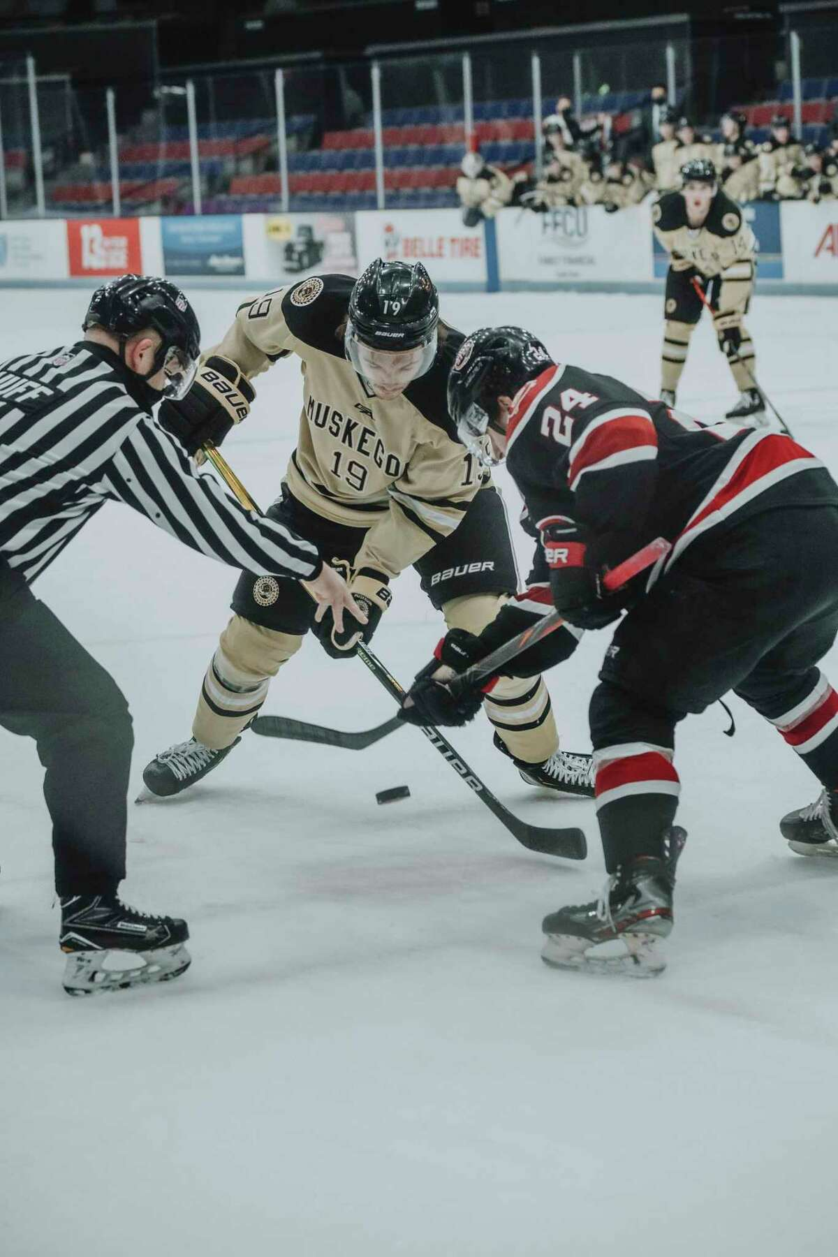 Big Rapids' Bradley Marek (19) is playing the Muskegon Lumberjacks with the USHL and will be joining Ferris State's hockey program next season. (Photo courtesy of the Muskegon Lumberjacks)