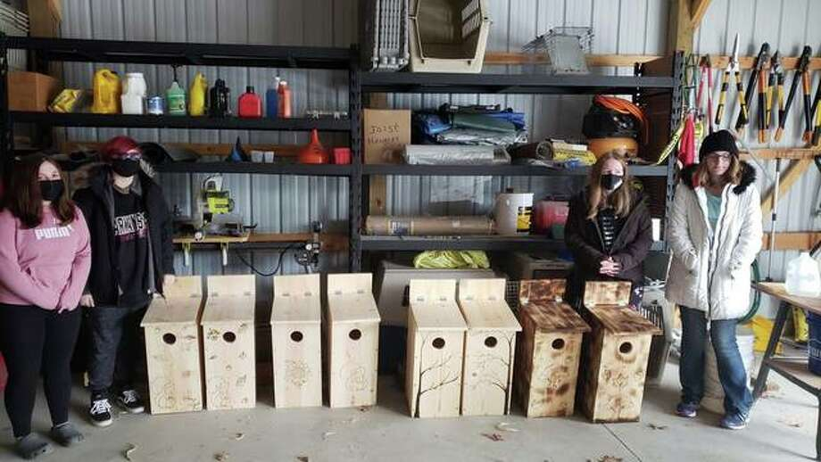 Four members of the Jerseyville Girl Scout Troop 83 — Hannah Kallal, Madi Sams, Natasha Smith and Madison Gibson — built eight squirrel boxes and eight waterfowl shelter boxes for the Treehoouse Wildlife Center in rural Dow.