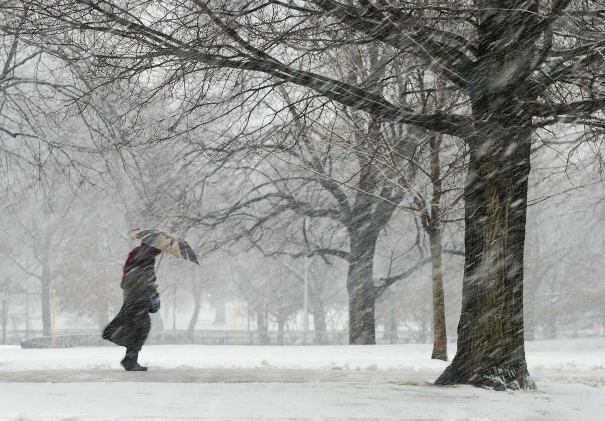 Snowstorm on Boston Common.