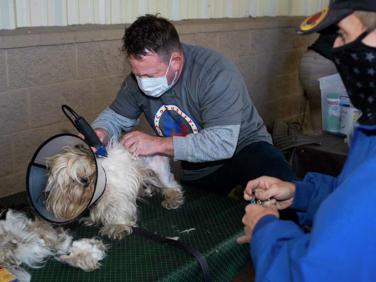 Rob Martin, a volunteer with the nonprofit Hope 4 Hounds, shaves Gizmo's fur as his owner James Finney, right, watches at a clinic at Communities Under the Bridge on Sunday, December 13, 2020. Ross and Jill Powell founded the nonprofit to offer free veterinary care for pet dogs of men and women living on San Antonio streets.