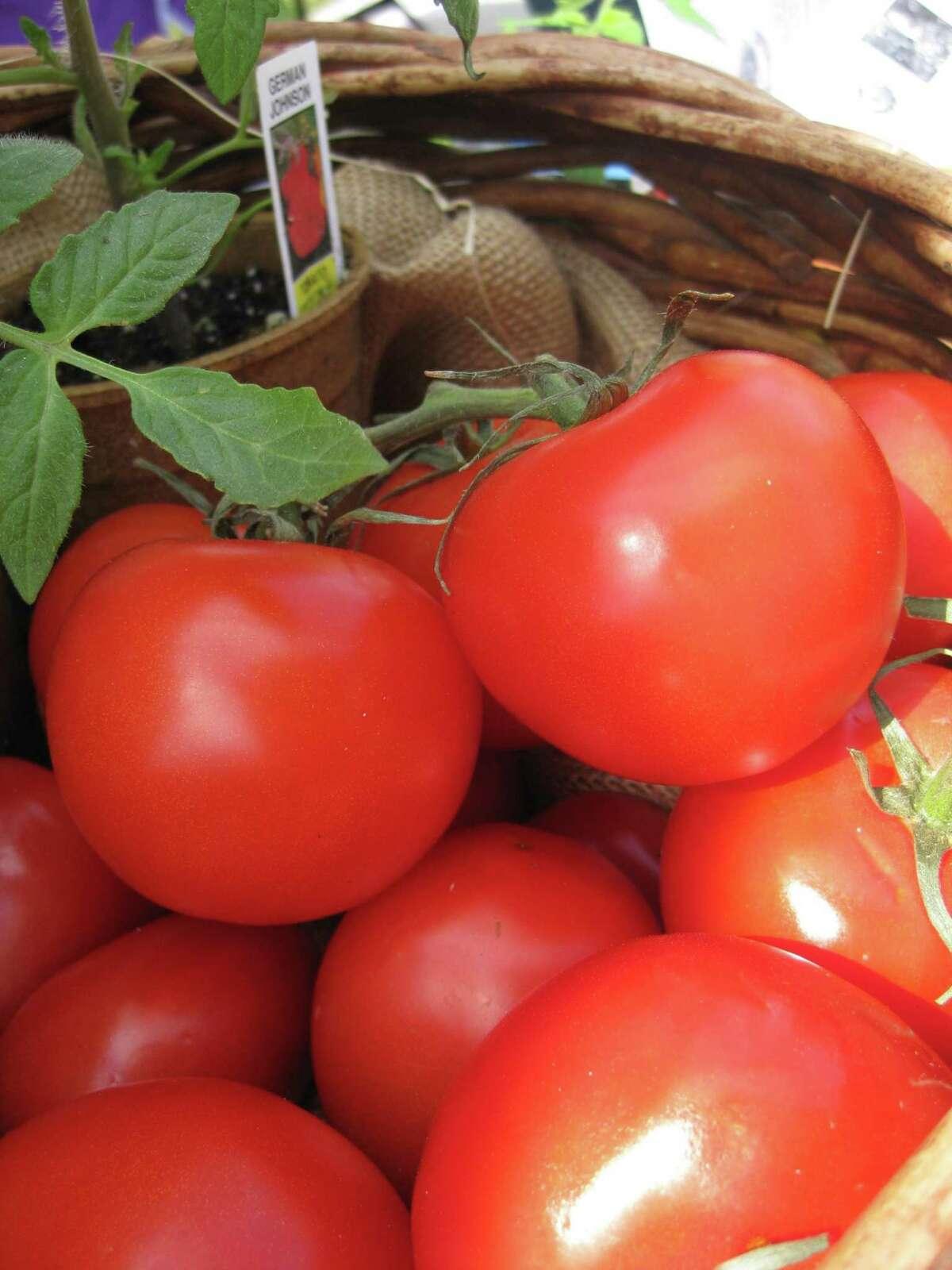 Bridgeland Farmers Market & More returns on Jan. 10 in Cypress.