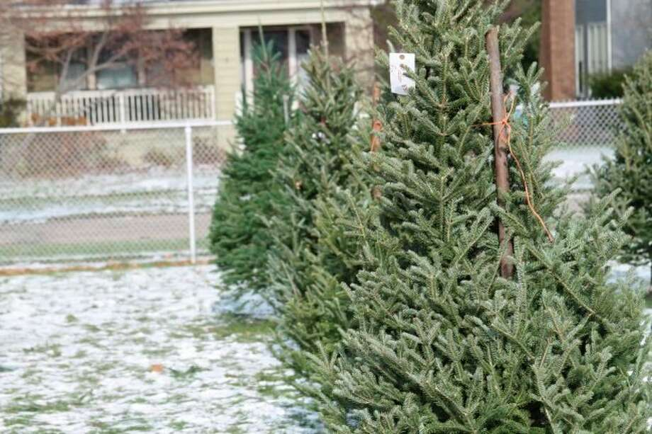 The City of Manistee will be picking up Christmas trees left on the curb through the end of January. (File photo)