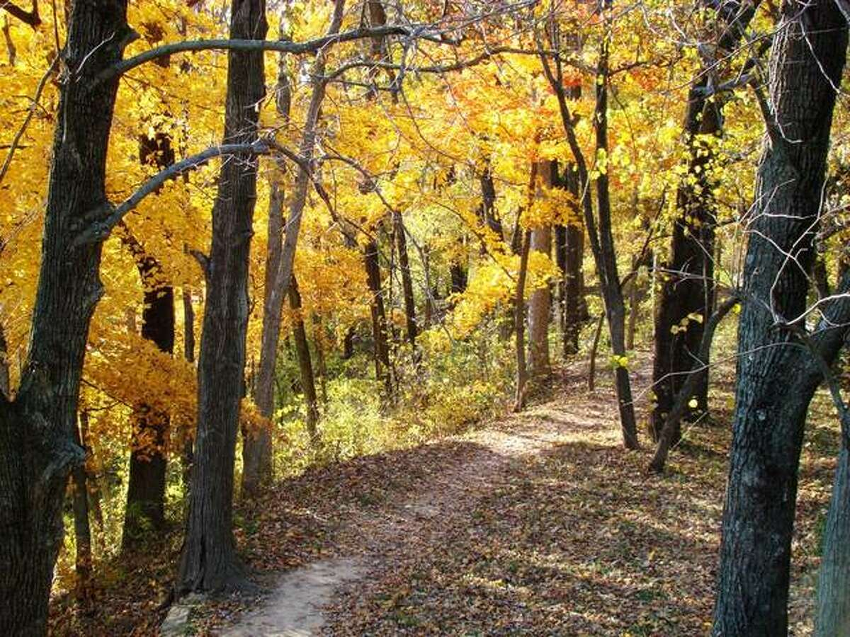The Illinois Department of Natural Resources and the USDA Forest Service on Tuesday signed an Agreement for Shared Stewardship. The pact includes Pere Marquette State Park.