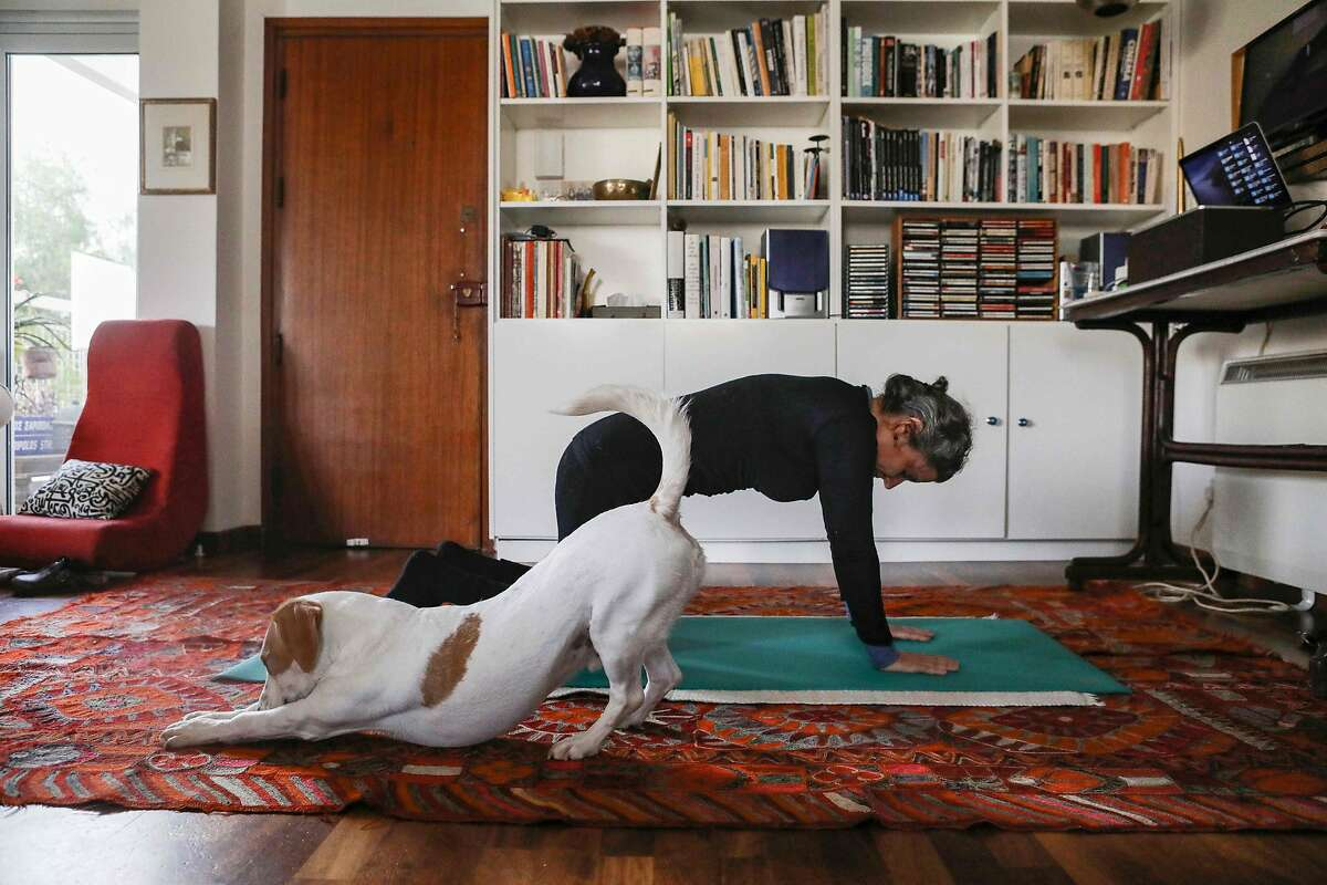 A woman taking part in an online pilates class at home, as her dog Elvis stretches next to her,.