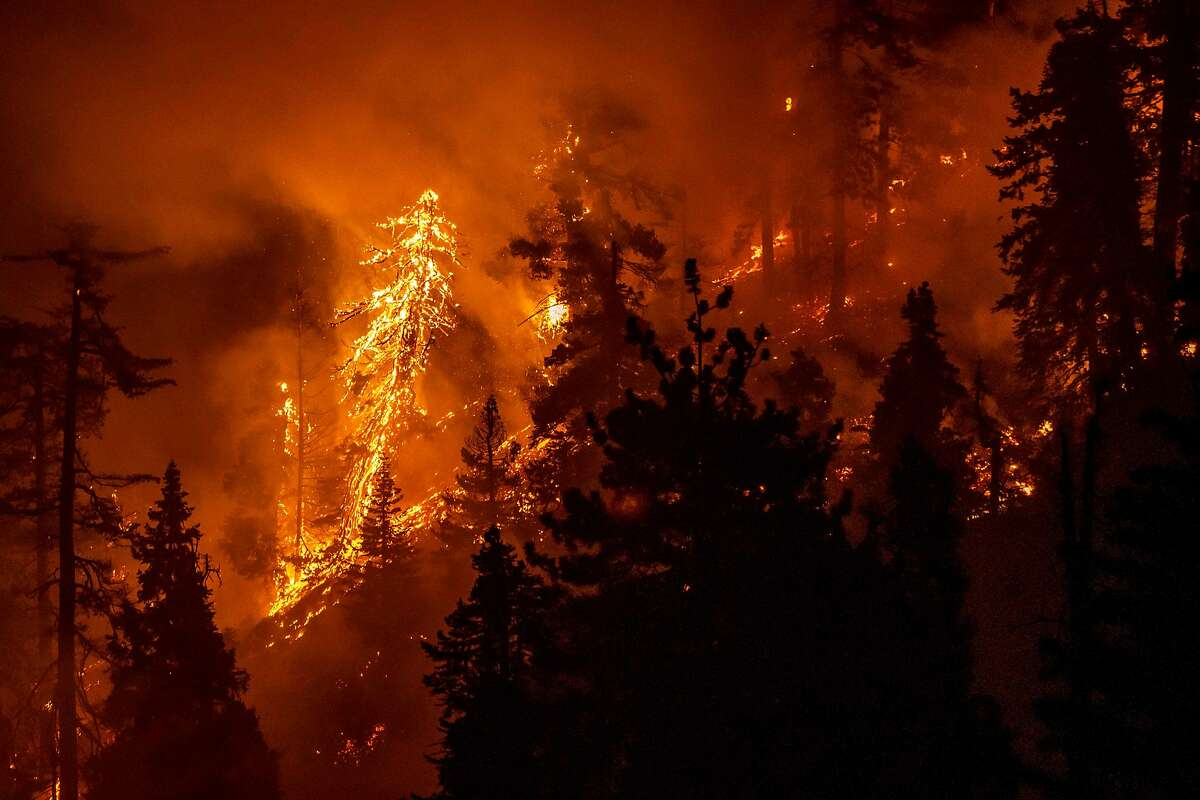 The Bobcat Fire burns through the Angeles National Forest in Los Angeles County last September. California Gov. Gavin Newsom's new budget proposal includes about $1 billion in funds for fire prevention.
