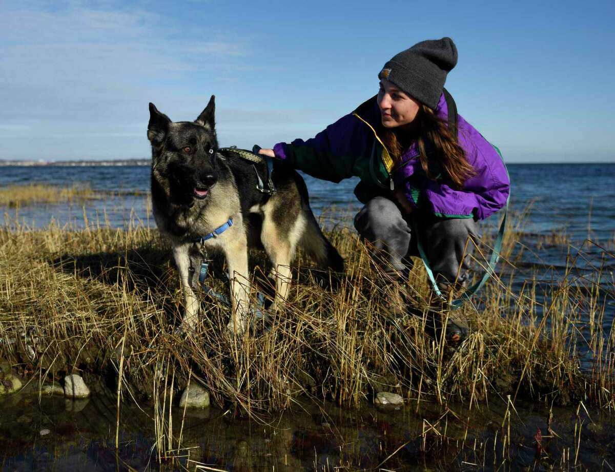 Greenwich's Kelly Weigold, a foster with Pet Rescue NY, walks her foster dog Athena, a 2-year-old husky-shepherd mix, on the beach at Greenwich Point Park in Old Greenwich, Conn. Wednesday, Jan. 6, 2021. Leashed dogs are allowed in the park from Dec. 1 through March 31.