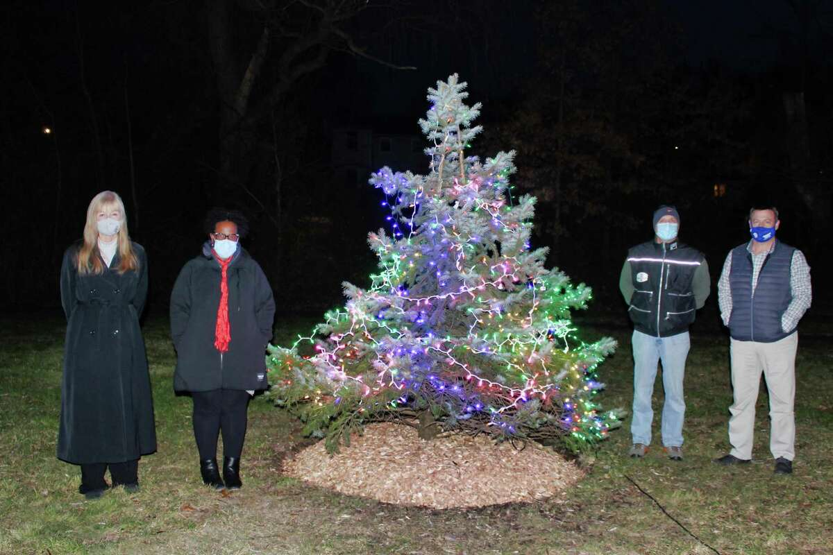 Mayor Nancy R. Rossi, 5th District Councilwoman Robbin Watt Hamilton, George S. Synodi, the University of New Haven's vice president for finance and administration, and Ronald M. Quagliani, UNH's associate vice president of public safety and administrative services, celebrate the newly lit Christmas tree in Brent Watt Park on Tile Street on Dec. 15.