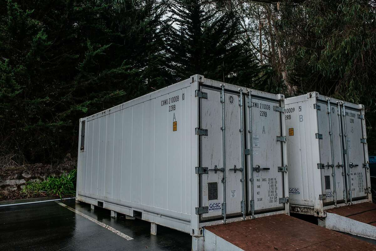 Cold storage trailers in the back parking lot of Cypress Lawn Memorial Park in Colma are able to accommodate extra bodies.