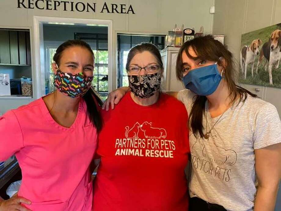 Left to right, Partners for Pets Shelter veterinarian Dr. Lindsey Gammon, director Erika Pratte and volunteer Joyce Grotefendt assist during a curbside vaccine and microchip clinic for members of the community. Photo: For The Intelligencer