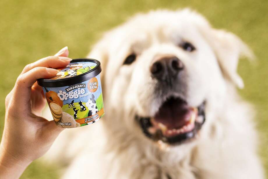 This photo provided by Ben & Jerry's shows Ben & Jerry's dog treats.  The venerable Vermont ice cream company said Thursday, Jan. 7, 2021, it's introducing a line of frozen dog treats, its first foray into the lucrative pet food market. The treats, sold in 4-ounce cups, will arrive in U.S. groceries and pet stores later this month.  (Ben & Jerry's via AP) Photo: Associated Press