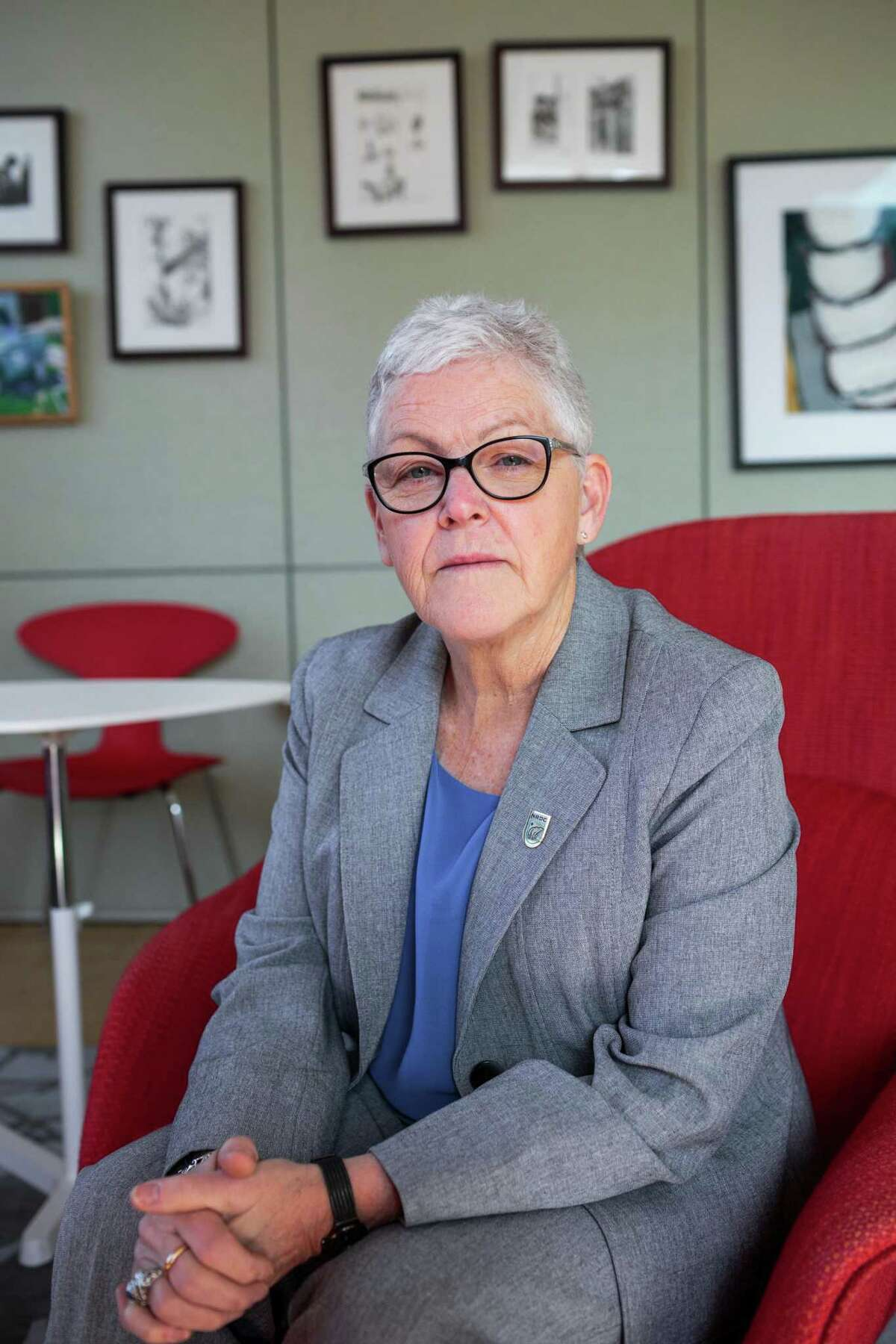 Gina McCarthy, former chief of the Environmental Protection Agency, was named by President-elect Joe to lead a new White House office on climate policy.