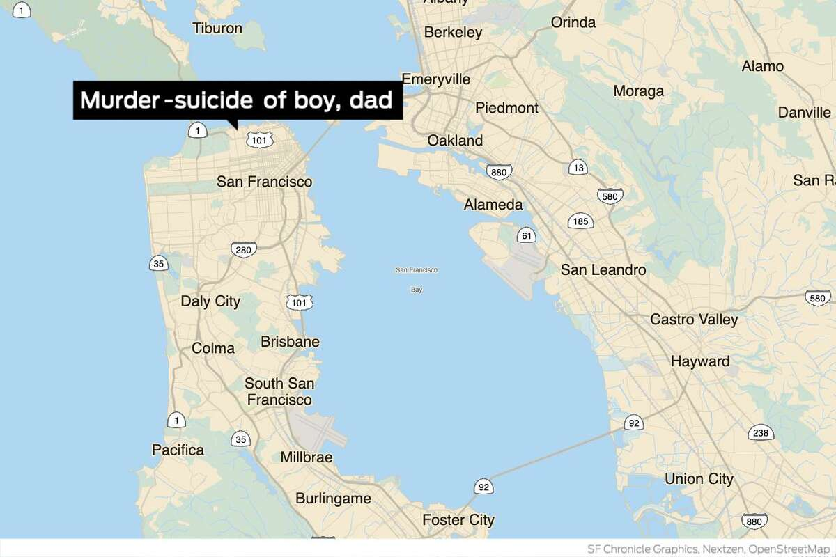 A 9-year-old boy was killed Wednesday evening in the Marina District in what police are investigating as a murder-suicide involving an adult family member believed to be the boy's father.