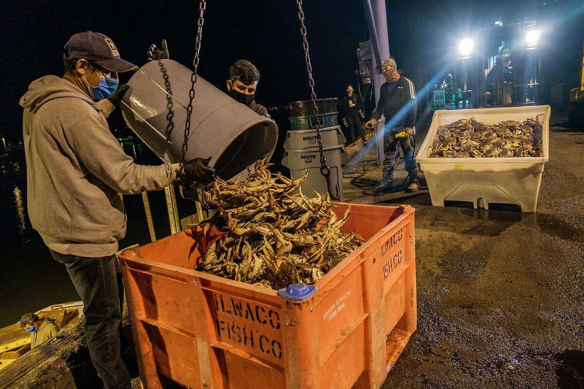 Dungeness crab is unloaded in San Francisco. The season was delayed, and the number of crabs down as part of a natural cycle. It adds up to the crustaceans being more expensive than usual. Sellers say the crabs should be around for months to come..