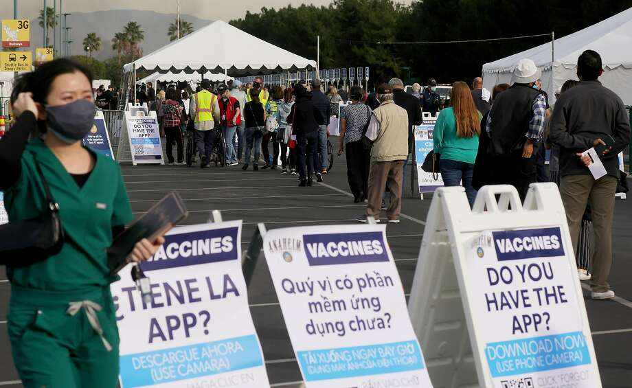 People wait in line to receive the COVID-19 vaccine at a mass vaccination site in a parking lot for Disneyland Resort on January 13, 2021 in Anaheim, California. Photo: Mario Tama, Getty Images