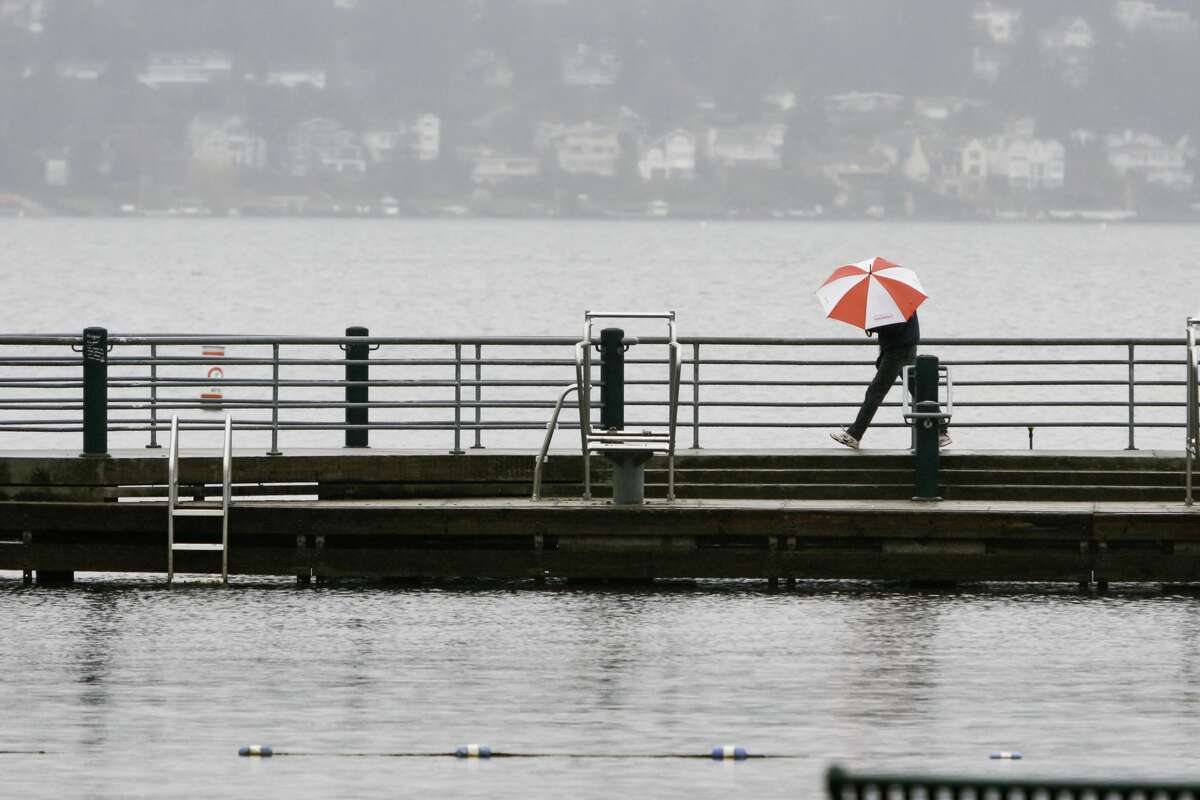 A person walks alone with a colorful umbrella in a city park in the suburbs of Seattle on a gray, rainy day
