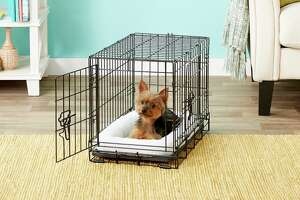 Frisco Fold & Carry Double Door Collapsible Wire Dog Crate,  Starting at $19.99 at Chewy