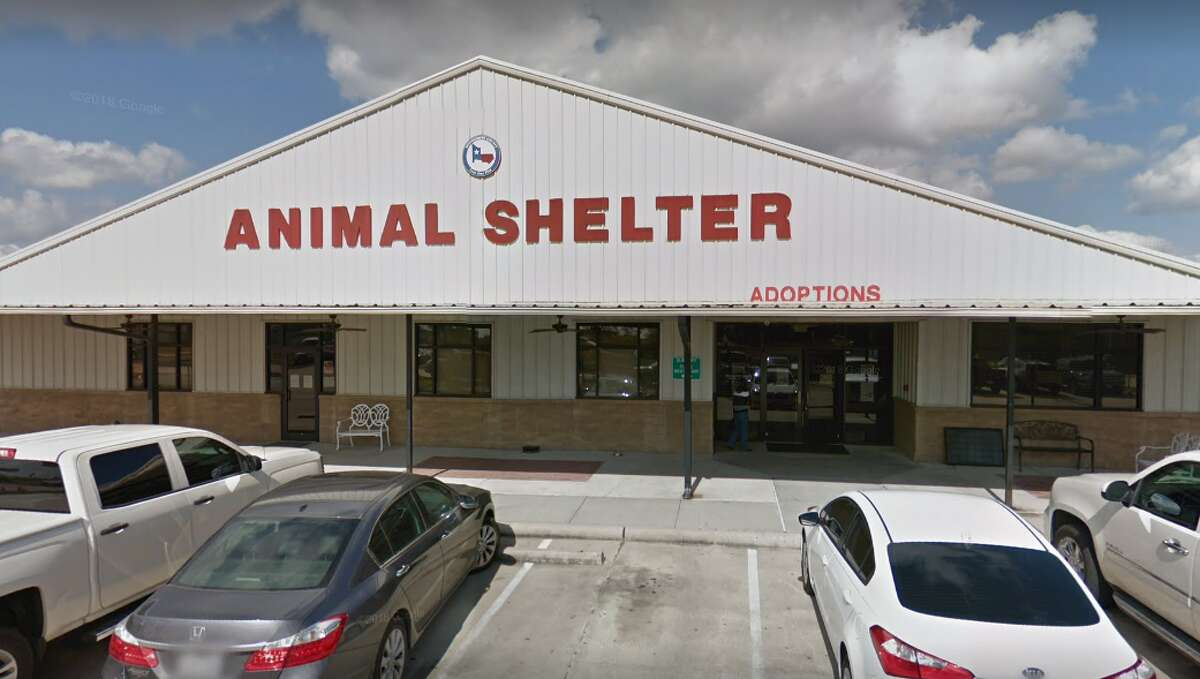 File - The Montgomery County Animal Shelter