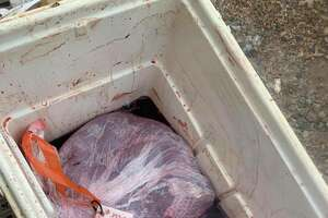 Texas Game Wardens posted about another meat processing bust where they found 22 deer unfit for human consumption on its Facebook page Friday. The wardens found the spoiled meat on Dec. 18 during a routine inspection at Backyard Taxidermy and Deer Processing in Decatur, which is a city about 40 miles north of Forth Worth.