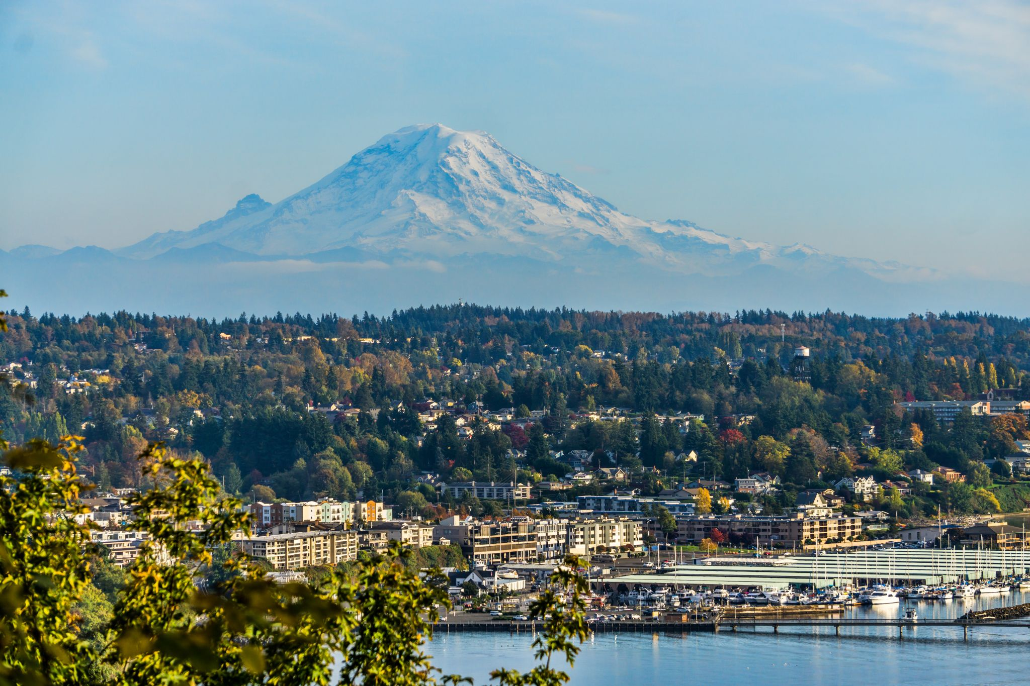 Looking to buy a home south of Seattle? Here's what you need to know