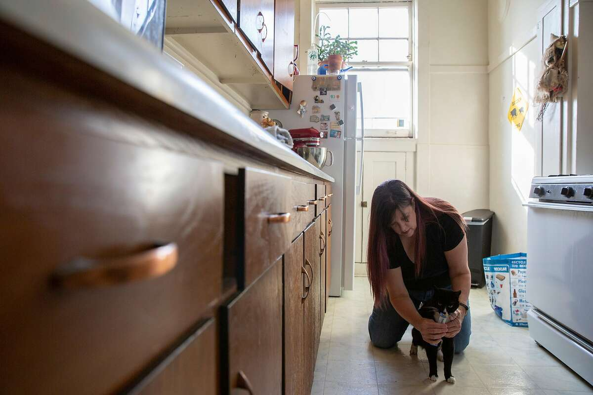 Shelly Ross and her cat Tyler Purrden at their San Francisco home. Ross, who runs cat-sitting services Tales of the Kitty, is among thousands of Californians whose unemployment benefits were frozen by the state amid the coronavirus pandemic.