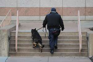 A police officer and his K9 patrol the capitol grounds ahead of planned protests in Hartford, Conn., on Sunday Jan. 17, 2020. After the scheduled start time at noon, there were only a few people who came to protest.