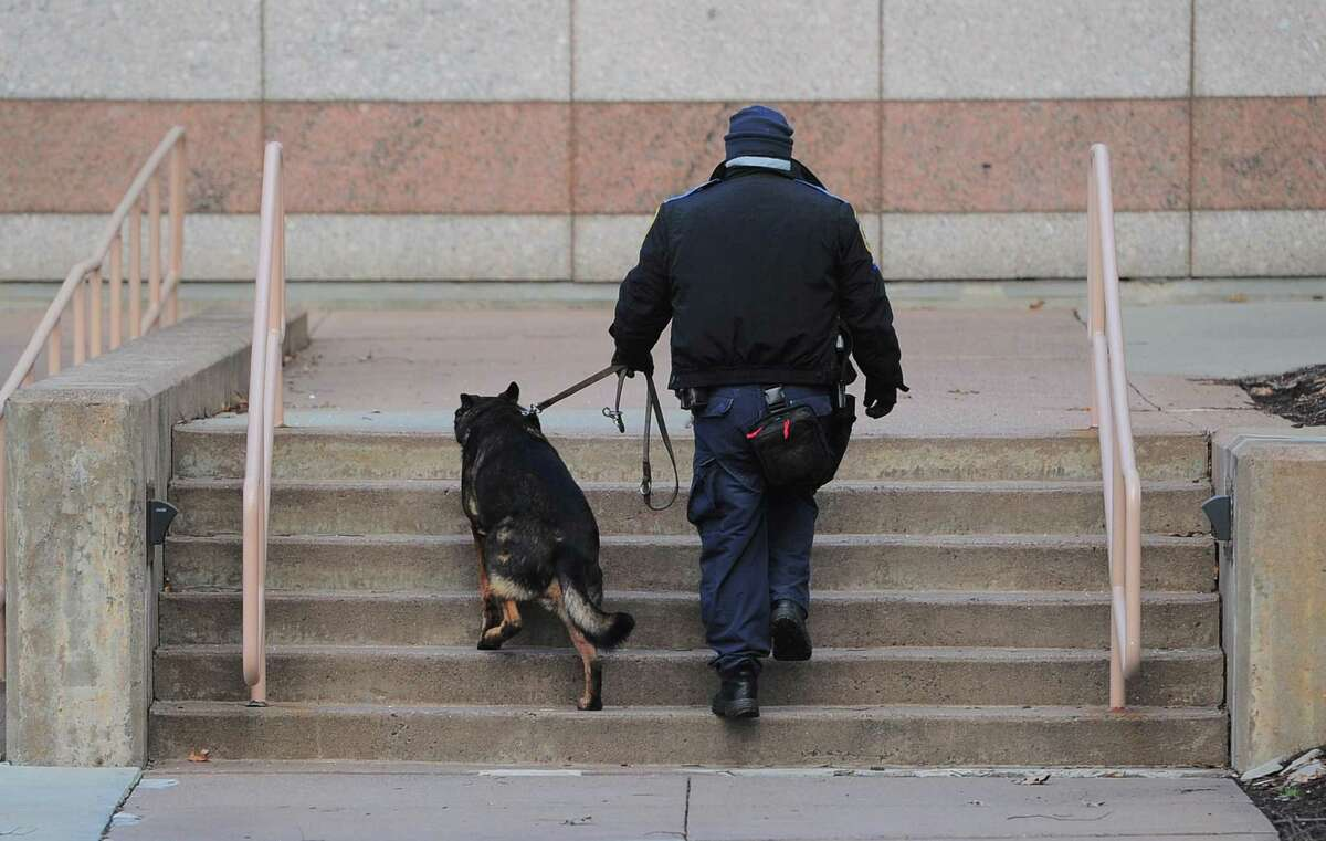 If Connecticut legalizes recreational marijuana, police K-9s trained to smell pot will likely have to retire, according to the Connecticut State Police.