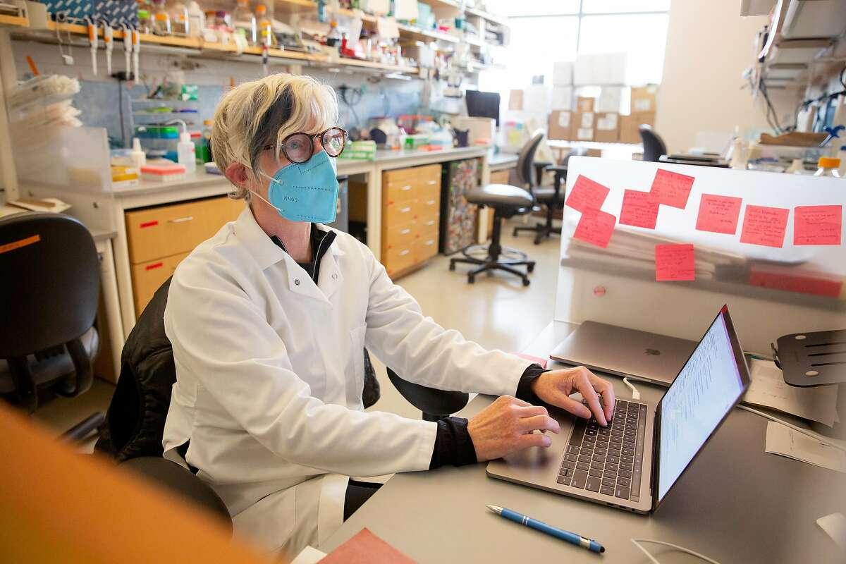 Stacia Wyman, a senior scientist, scrutinizes Covid-19 genomes at the Innovative Genomics Institute in Berkeley.