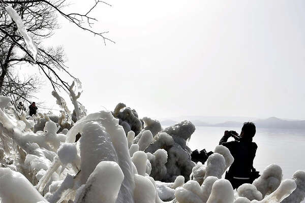 Natural ice sculptures have formed along the shore of Lake Inawashiro in Fukushima Prefecture, Japan, as low temperatures freeze the spray on tree branches. Strong westerly winds cause the spray from the lake to hit the trees, creating these shibuki-gori that draw tourists. According to the Inawashiro Tourist Association, the ice sculptures were hardly seen last year due to the warm winter, but this year they are expected to remain until the middle of February.